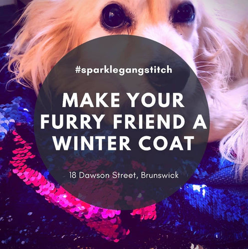 Make your Furry Friend a Winter Coat