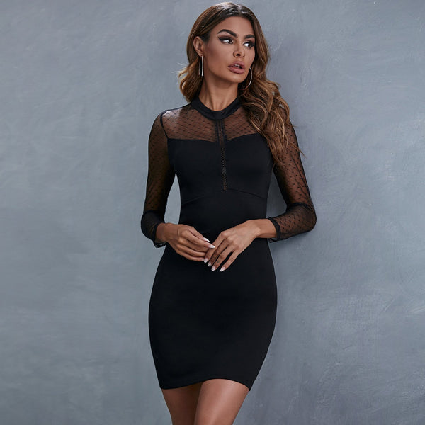 Lace Mesh Sexy Black Dress