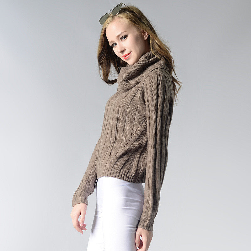 Pure Color High Collar Knitting Sweater
