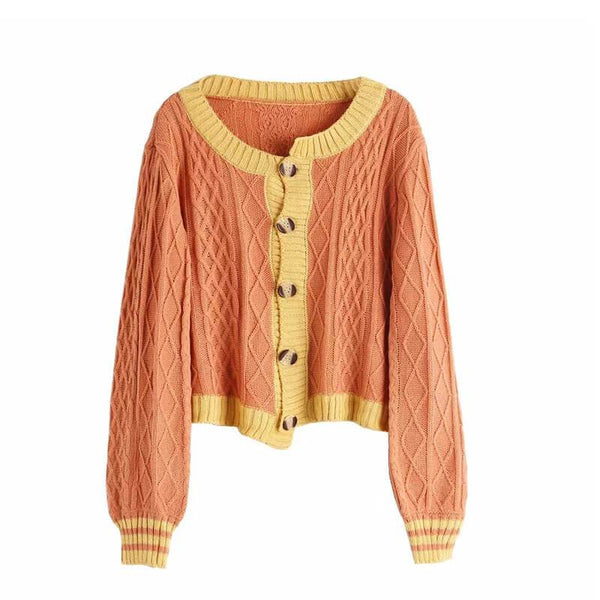 Colorblock Argil Knit Cardigan Sweater