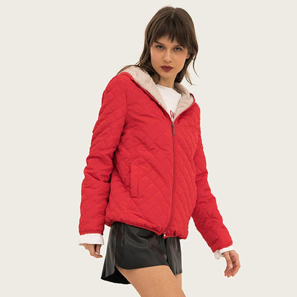 Petite Hooded Padded Jacket
