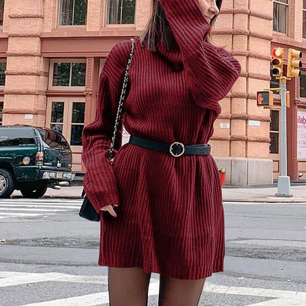 Plus Size Long Sleeve Turtleneck Sweater Dress