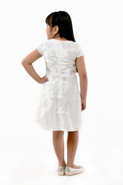 Cotton Lace Dress (GDS 376)