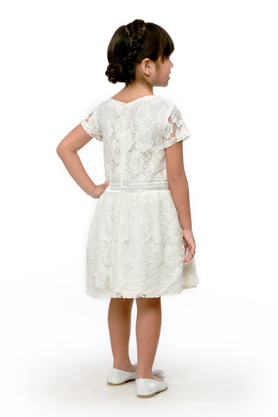 Embroidered Lace Dress (GDS 387)