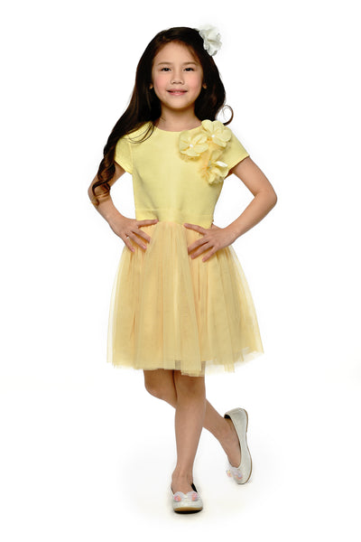 Tulle Skirt Dress - Lemon (GDS 428)