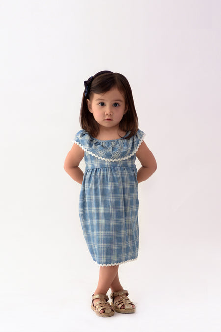 Jacquard Short Sleeves Shift Dress (GDS 294A)