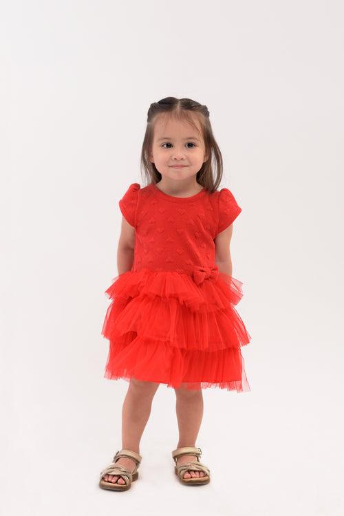 Tulle Tiered Skirt Dress (IGDS 047)