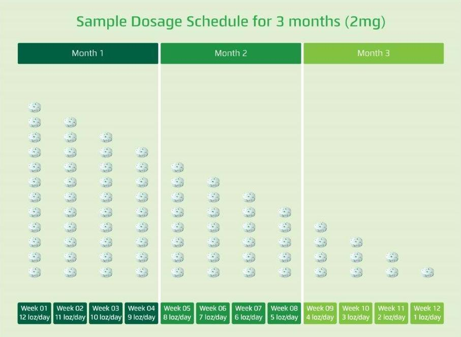 Sample Dosage Schedule for 3 Months (2MG)