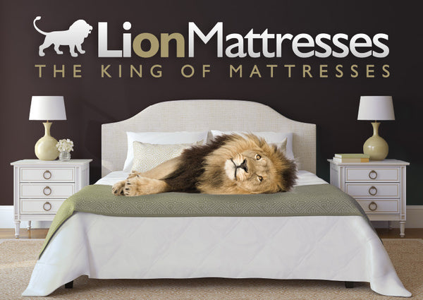 Lion Mattresses - Memory Foam Mattresses