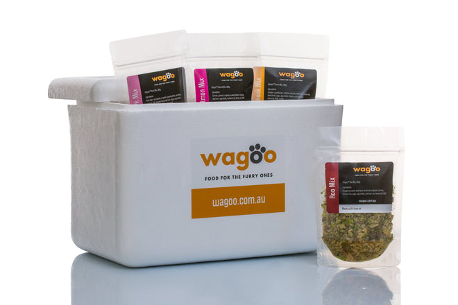 Wagoo natural dog food delivery chiller box