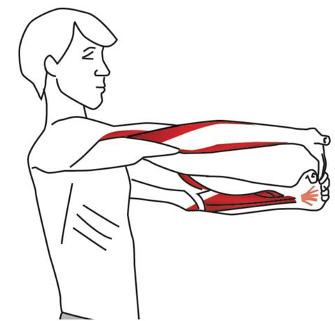 Five Stretches for Elbow & Wrist Pain