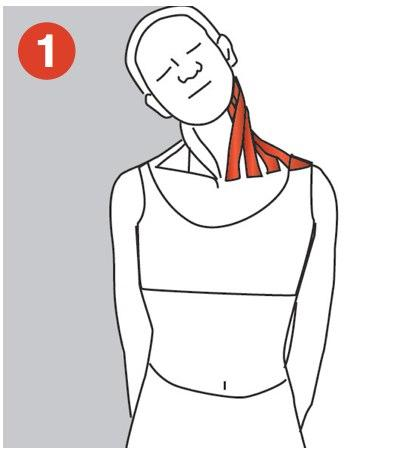 Five stretches for the neck and shoulder