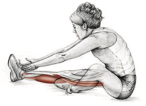 Six Types of Stretches and When You Should Use Them
