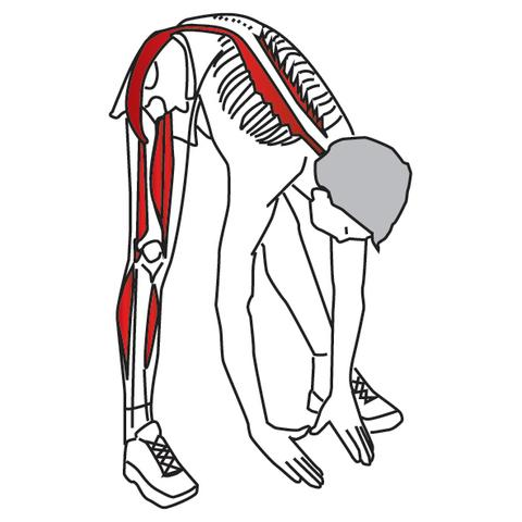 Stretching for Pain Relief and Rehabilitation - Hip and Thigh