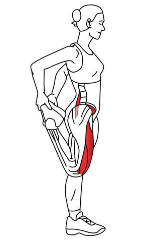 Standing rectus femoris stretch
