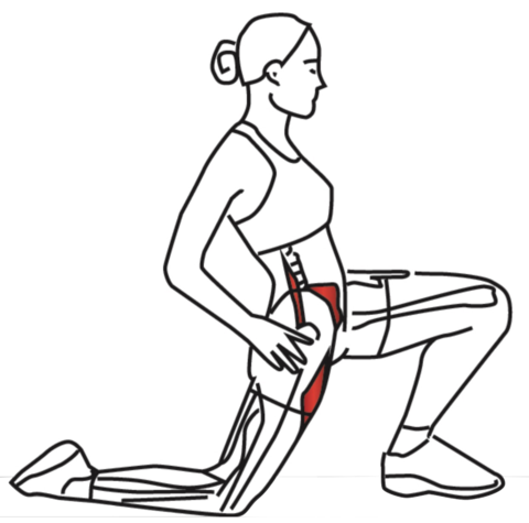 kneeling hip stretch