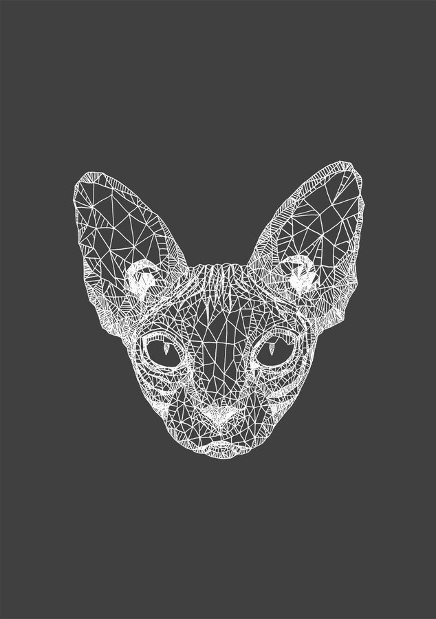 Sphynx Cat – White On Grey