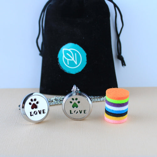 Stainless Steel Dog Paw Holiday Gift Set