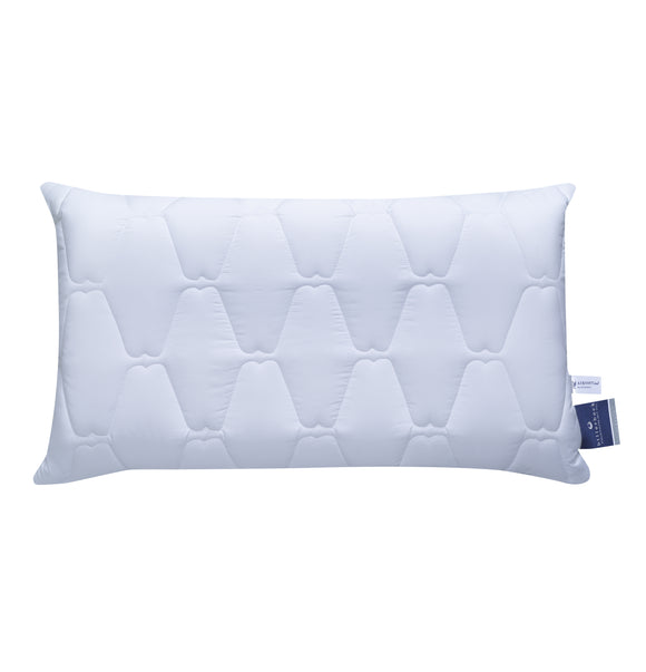 Billerbeck neck support pillows