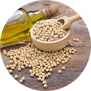 SOY PROTEIN INGREDIENT