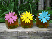 24 Honey Favours with Daisy Tags (1.5 oz)