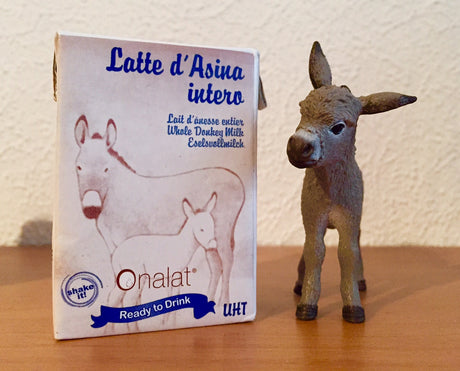 Onalat® Ready to Drink - Tetra Pak® 100ml - Pure whole Donkey Milk