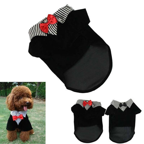 Puppy Men's Suit Bow Tie Costume - Puppy