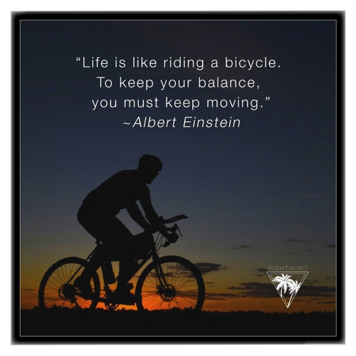Albert Einstein Bicycle Framed Lustre 12x12