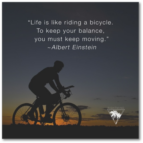 Albert Einstein Bicycle Canvas 9x9