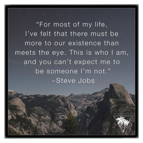 Steve Jobs Existence Framed Canvas 12x12