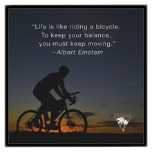Albert Einstein Bicycle Framed Canvas 12x12