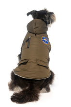 Nomad Jacket from Fuzzyard, which is for your exploring furry pet and has a removable hood