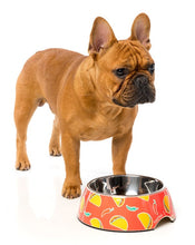 Fuzzyard Hey Esse Easy Feeder Bowl for Dogs features a delightful colourful taco and chilli design