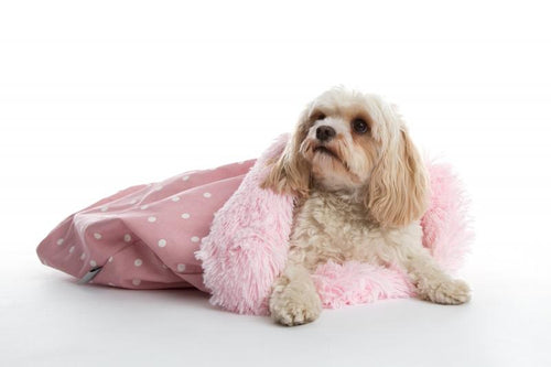 Deluxe Pooch Pad in Dotty Rose and Shaggy Baby pink