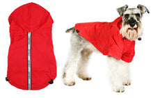 Explorer Windbreaker Red Sport Jacket