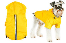 Explorer Windbreaker Yellow Sport Jacket