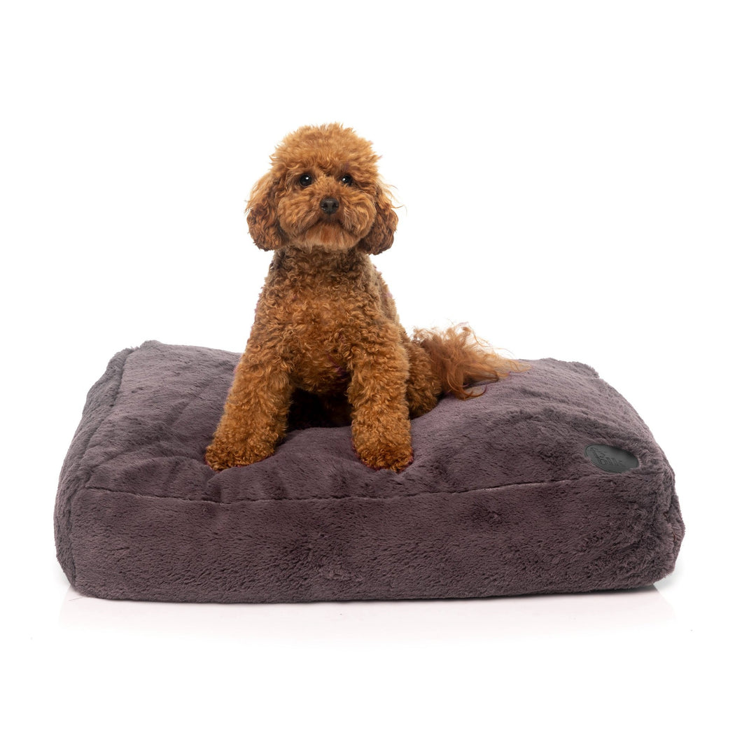 The Deluxe Nanook Dog pillow bed from FuzzYard – the ultimate in luxury for your best friend.
