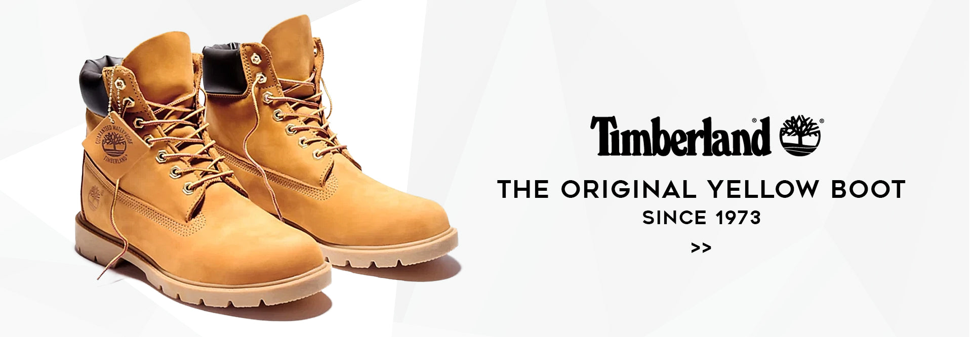 SVP Sports - Timberland Collection Banner