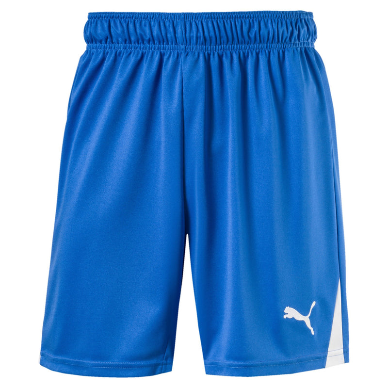 Puma - Men's Team Shorts (701275 02-A)