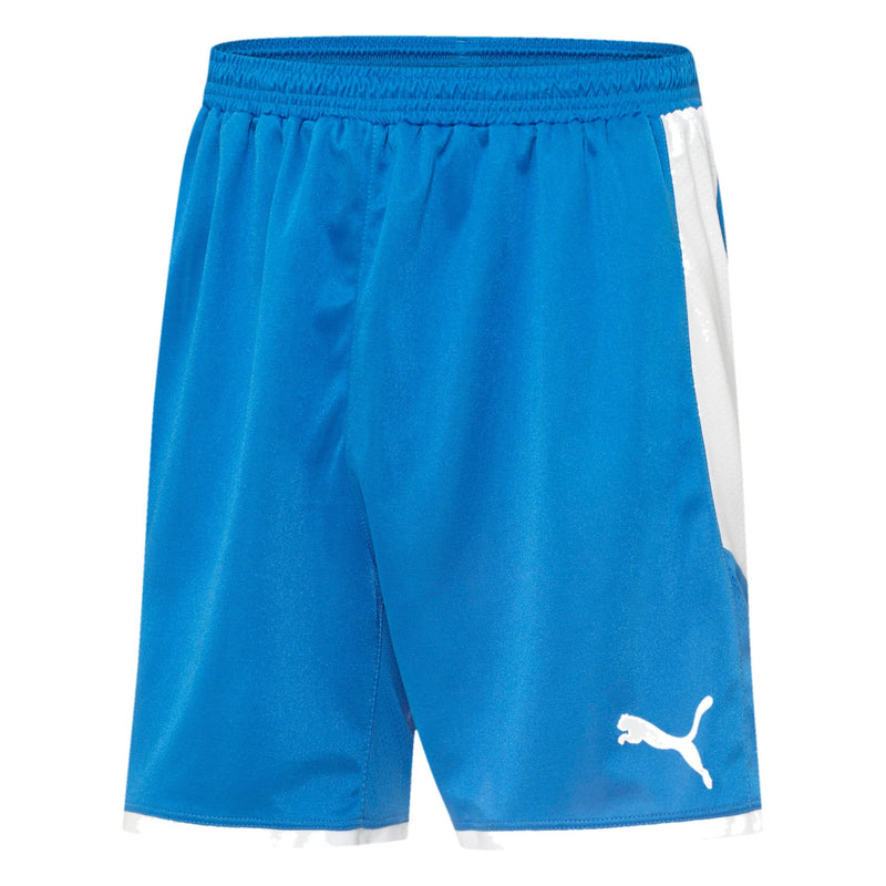 Puma - Men's Borussia Short (703039 02-A)