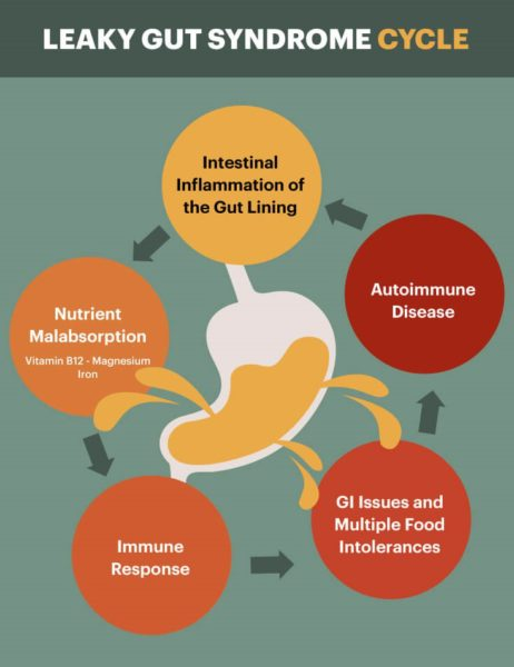 Leaky Gut Syndrome Cycle