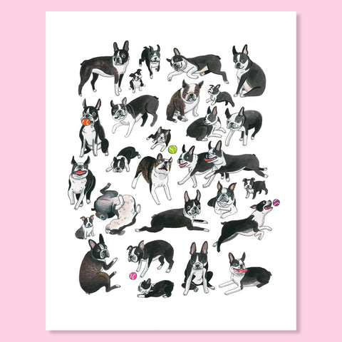Boston Terrier Buds Print