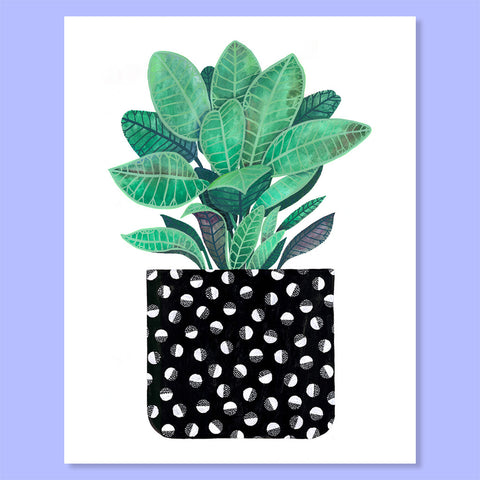 Half-Moon Houseplant