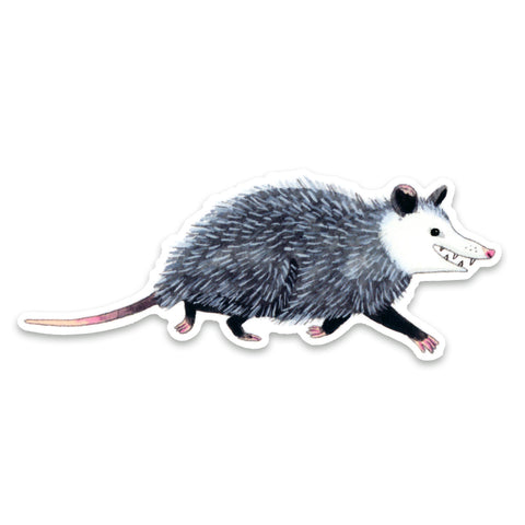 Opossum Sticker