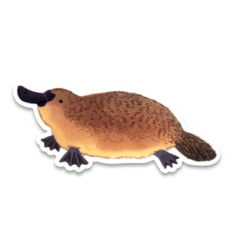 Platypus Sticker