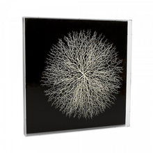 Load image into Gallery viewer, Abstract White Branch Art