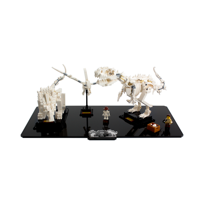 Display base for LEGO Ideas: Dinosaur Fossils (21320) - Wicked Brick