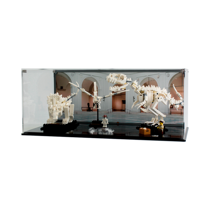 Display case for LEGO Ideas: Dinosaur Fossils (21320) - Wicked Brick