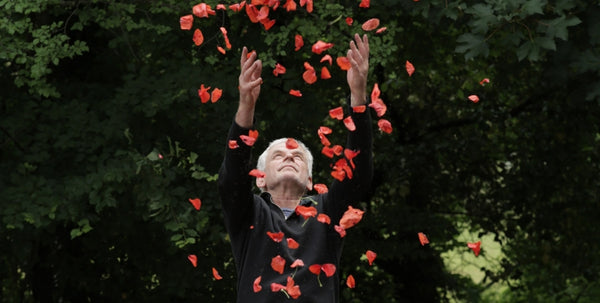 Andy Goldsworthy documentary Leaning into the Wind