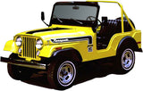1974 AMC Jeep Renegade Stripe Decal Kit (1 Color)